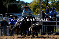 BraidwoodRodeo2015_0115