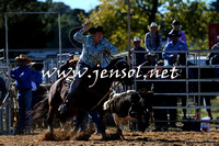BraidwoodRodeo2015_0117