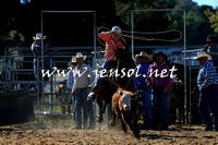 BraidwoodRodeo2015_0197