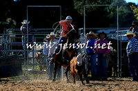 BraidwoodRodeo2015_0198