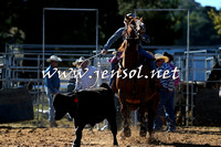 BraidwoodRodeo2015_0207