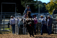 BraidwoodRodeo2015_0208