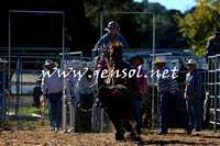 BraidwoodRodeo2015_0210