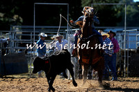 BraidwoodRodeo2015_0212