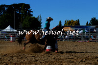 BraidwoodRodeo2015_0442