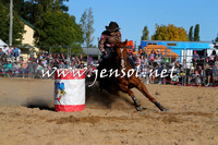 BraidwoodRodeo2015_4315