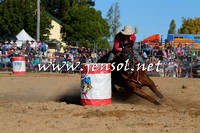 BraidwoodRodeo2015_4329