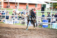 CoomaRodeo2016_2998