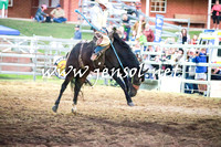 CoomaRodeo2016_2974