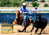 BraidwoodCampdraft2021_2407