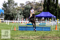 Fri_Showjumping 030