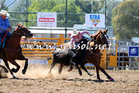 QueanbeyanRodeo2015_1004