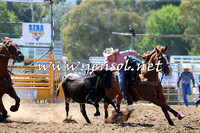 QueanbeyanRodeo2015_1015