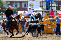 QueanbeyanRodeo2015_0986