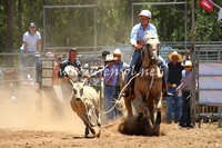 pictonrodeo2013one_0388_1
