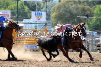 QueanbeyanRodeo2015_1006