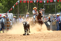 pictonrodeo2013one_0377_1