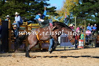 BraidwoodRodeo2015_4119