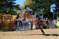 BraidwoodRodeo2015_4121