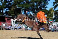 BraidwoodRodeo2015_4126