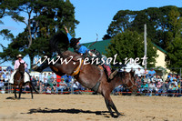 BraidwoodRodeo2015_4127