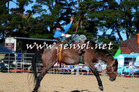 BraidwoodRodeo2015_4136