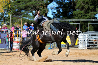 BraidwoodRodeo2015_4158