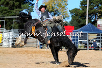 BraidwoodRodeo2015_4161
