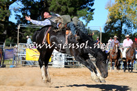 BraidwoodRodeo2015_4162