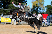 BraidwoodRodeo2015_4163