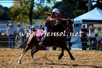 BraidwoodRodeo2015_0456