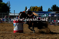 BraidwoodRodeo2015_0462