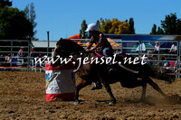 BraidwoodRodeo2015_0463