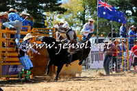BraidwoodRodeo2015_1769