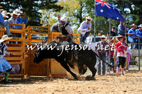 BraidwoodRodeo2015_1774
