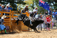 BraidwoodRodeo2015_1794