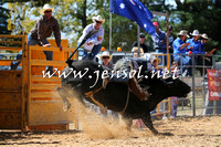 BraidwoodRodeo2015_1796