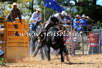 BraidwoodRodeo2015_1798
