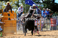 BraidwoodRodeo2015_1817