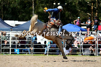 PictonRodeo2015_1578
