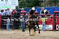 CoomaRodeo2015_2139