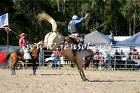 PictonRodeo2015_1582
