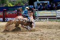 CoomaRodeo2015_0025