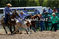 CoomaRodeo2015_0743