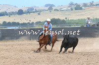 BraidwoodCampdraft2014_2729