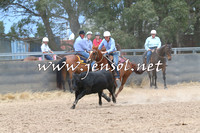 BraidwoodCampdraft2014_2734
