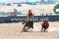 BraidwoodCampdraft2014_2724