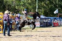 PictonRodeo2015_1589