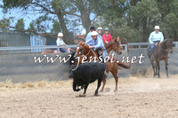 BraidwoodCampdraft2014_2733