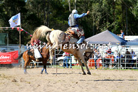 PictonRodeo2015_1568